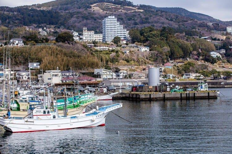 稲取港の様子