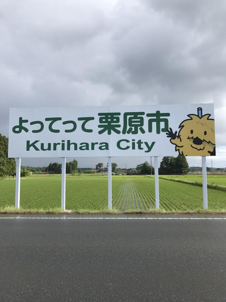 kuriharashi_20170621